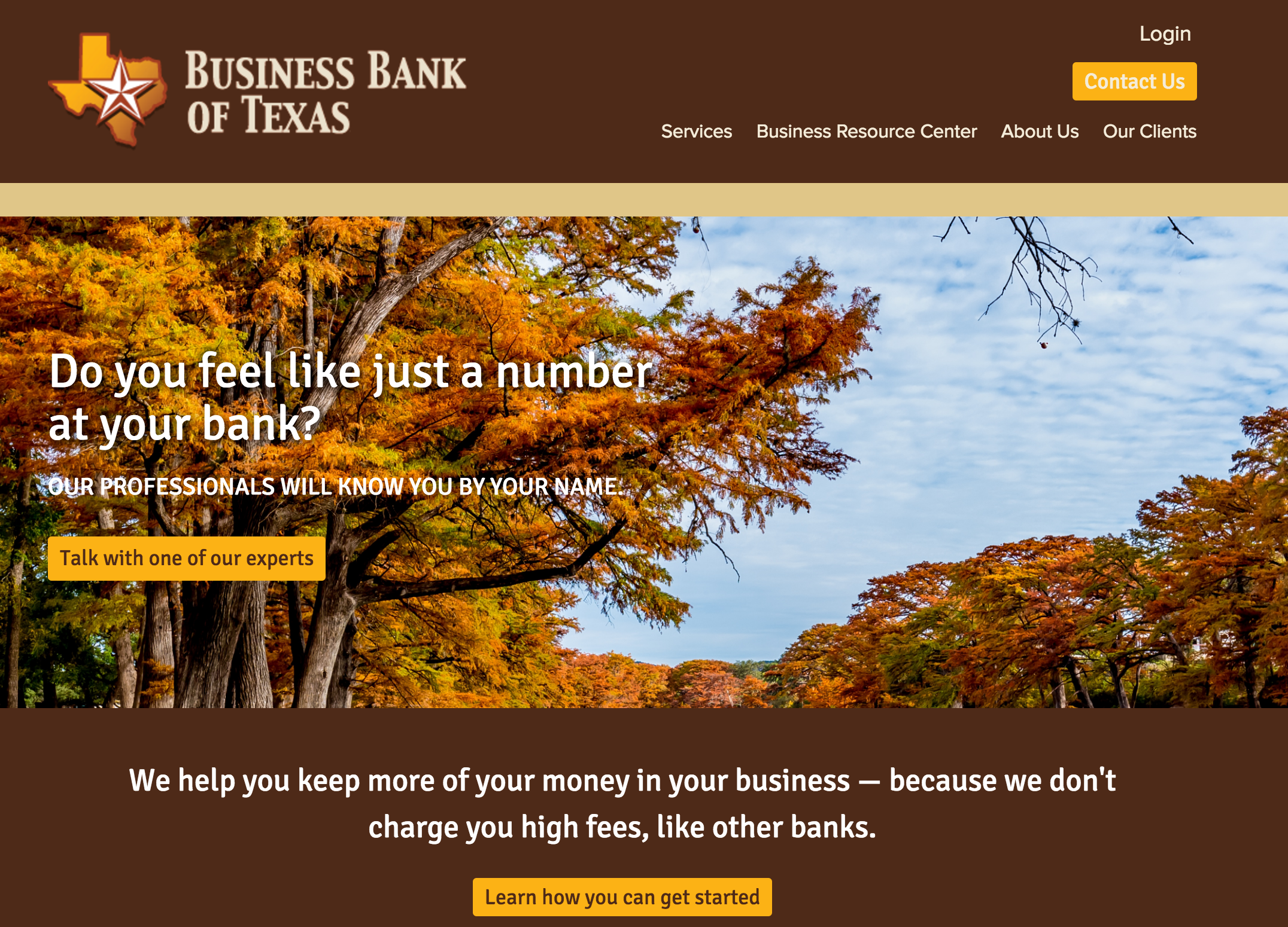 Business-bank-of-texas-website.png